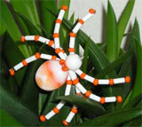 Оранжевый паук из бисера