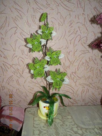 Для того чтобы сделать орхидею