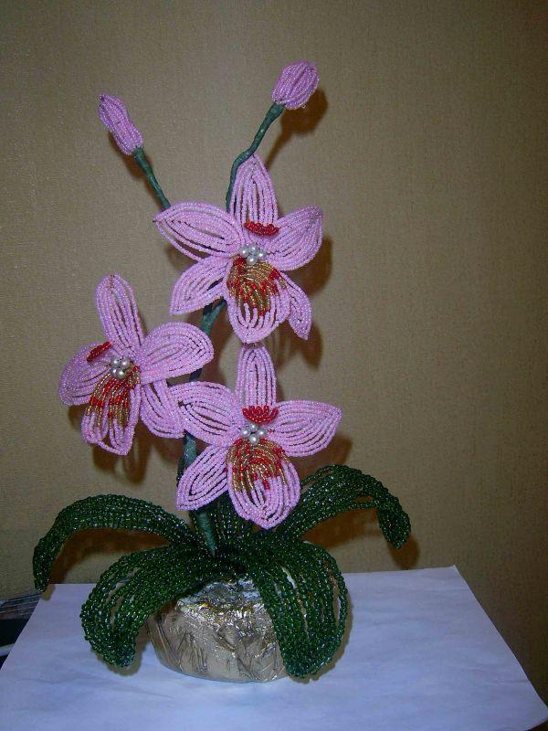 сделаем орхидею из бисера.