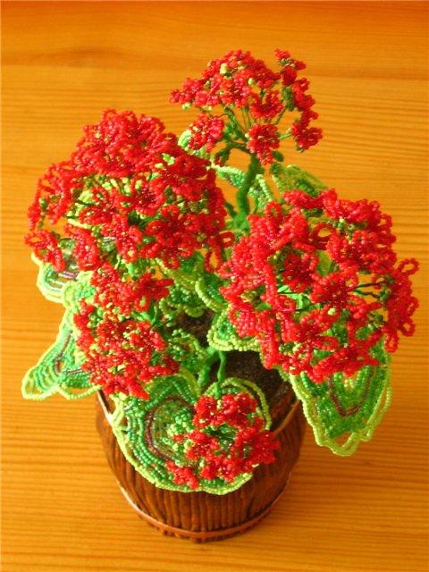 Автор: Admin Дата: 03.11.2013 Описание: 25 мар 2013 Простой цветок красной герани сплетен из бисера.